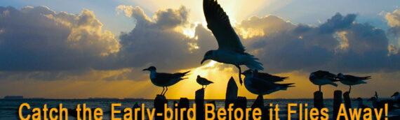 Catch the Early-bird Before it Flies Away!
